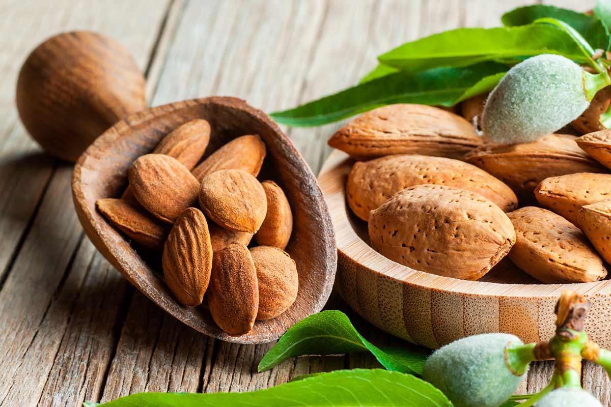 Propietast, beneficis i receptes amb ametlles