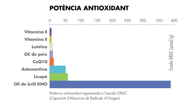 antioxidant_cat