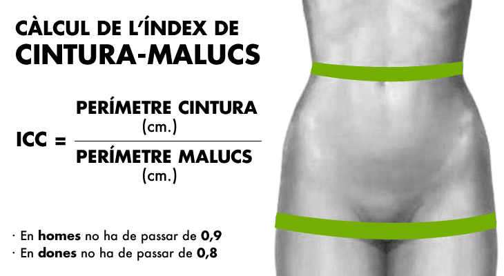 index_cintura-malucs_cat