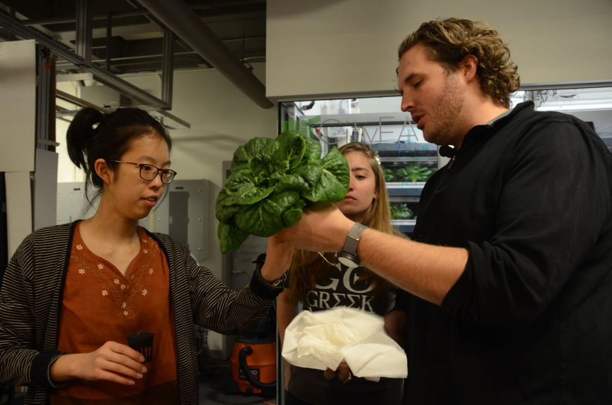 Caleb Harper mostra una hortalissa cultivada al CityFARM del MIT a unes alumnes – @MITCityFARM