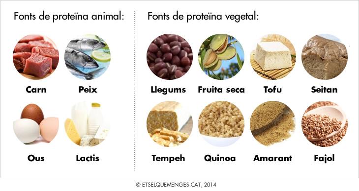 proteina_cat