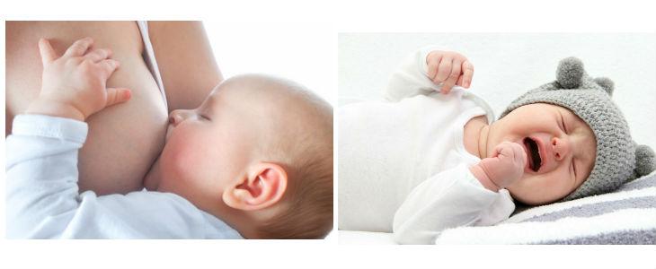 La microbiota present a la llet materna protegeix el nadó contra diferents malalties