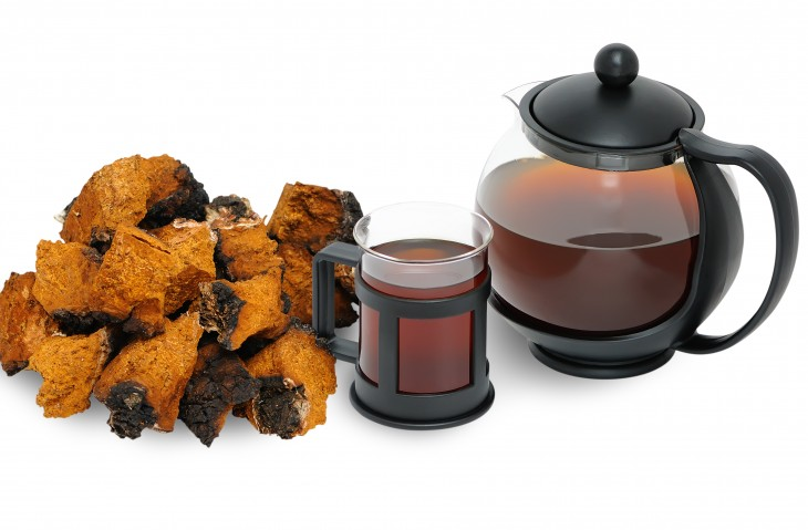 Chaga mushroom. A medicinal drink and chopped into pieces Chaga