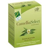 camelliaselect