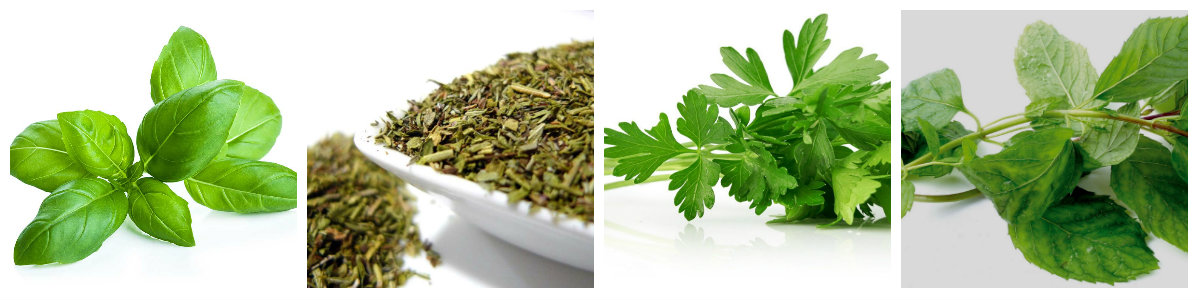 herbes aromàtiques