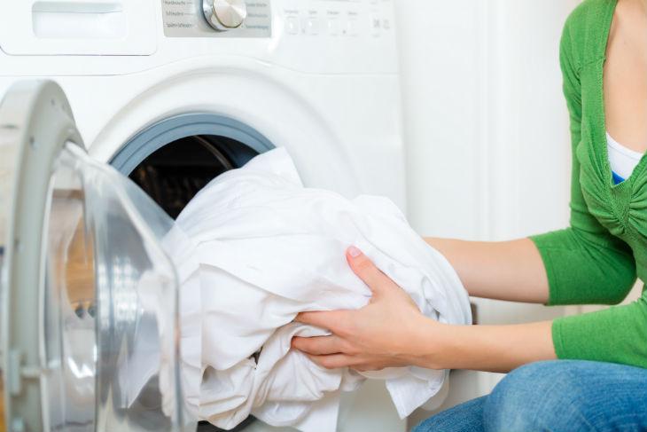 rentadora-730
