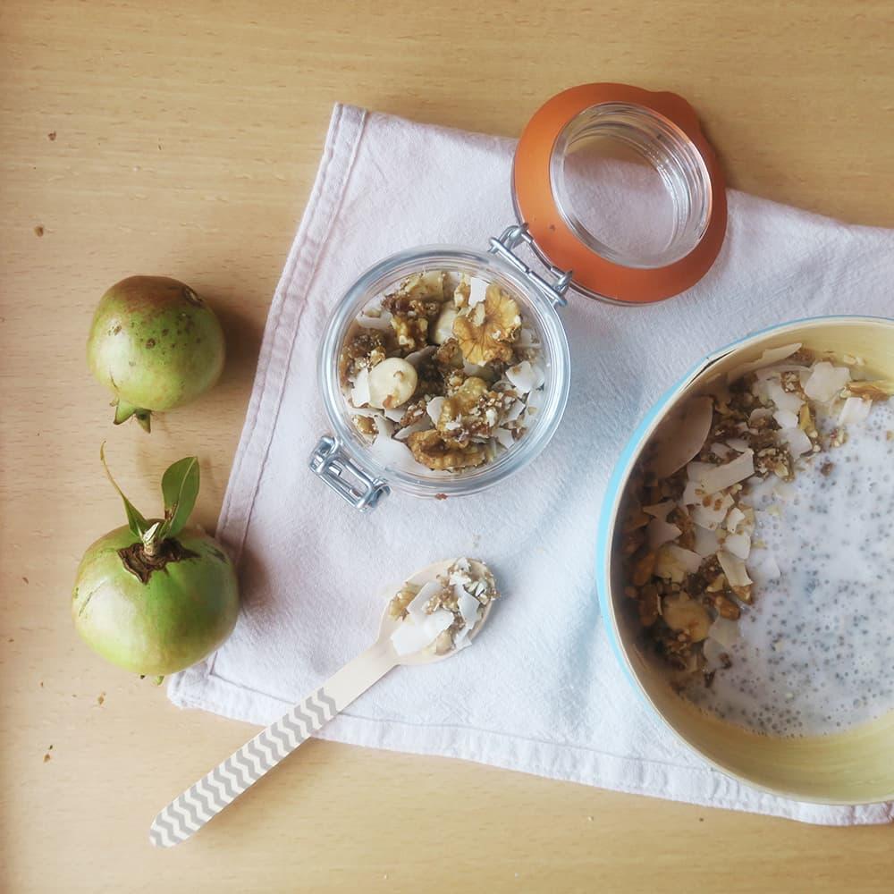 Rawnola de fruits secs i xips de coco