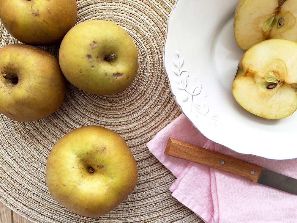 Supercrema antianèmica amb bocins de la reina de les pomes