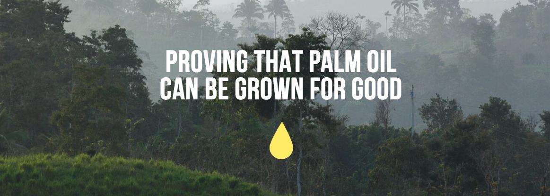És tan dolent l'oli de palma?