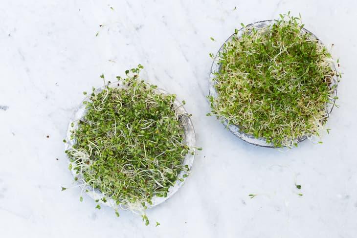 lalakitchen-batido-brocoli-germinados-1