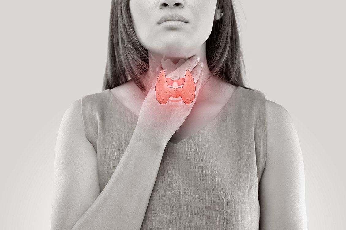 Tot el que has de saber de la glàndula tiroide