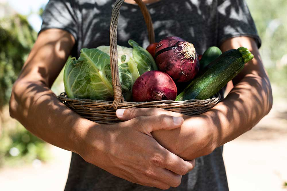Verdures, la base d'una alimentación saludable
