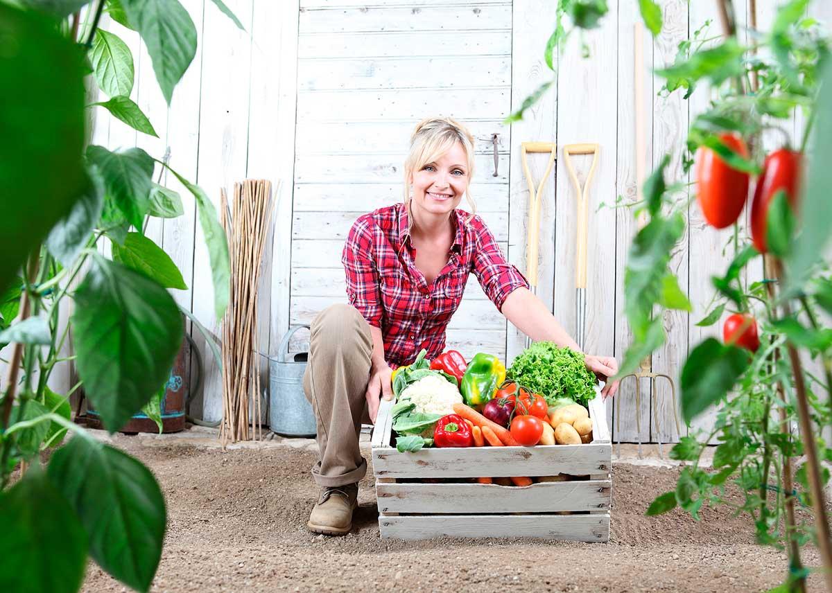 10 raons per comprar cistelles de fruita i verdura ecològiques