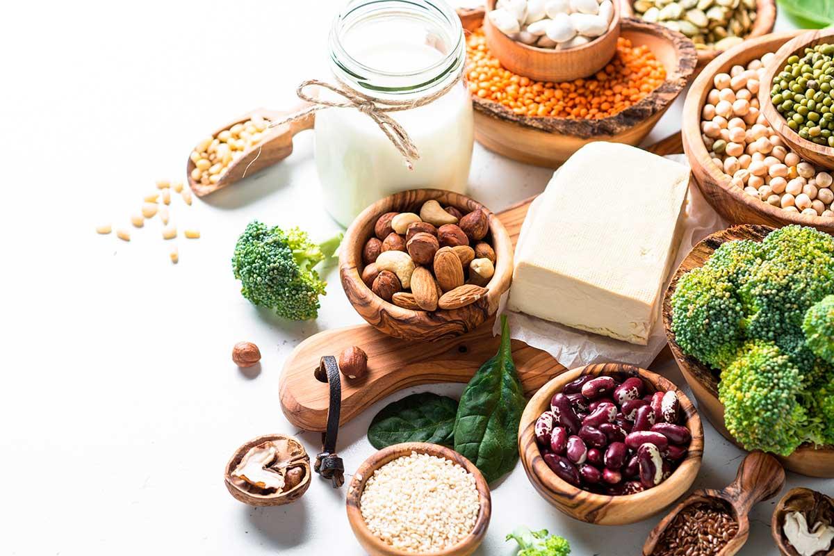 Tipus de proteïnes vegetals