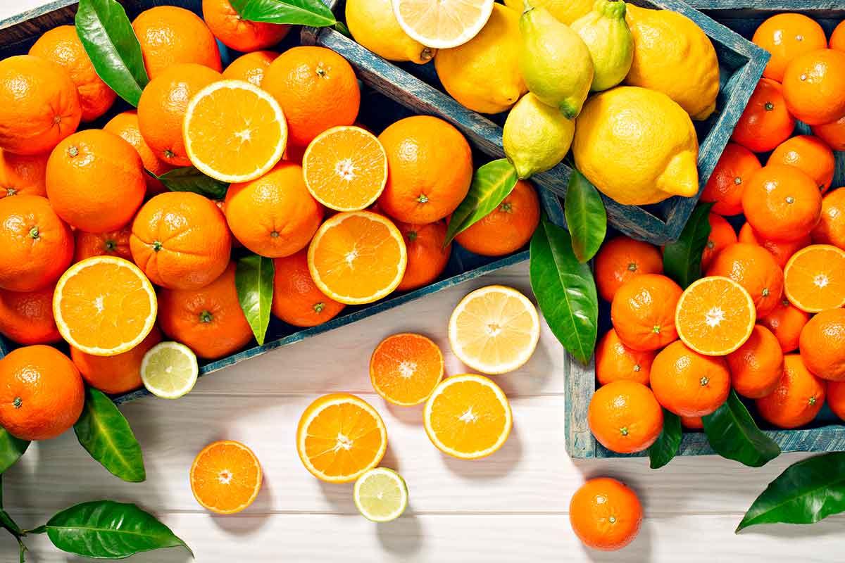 Taronges, mandarines i llimones