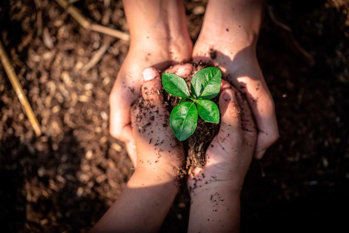 agricultura-bio