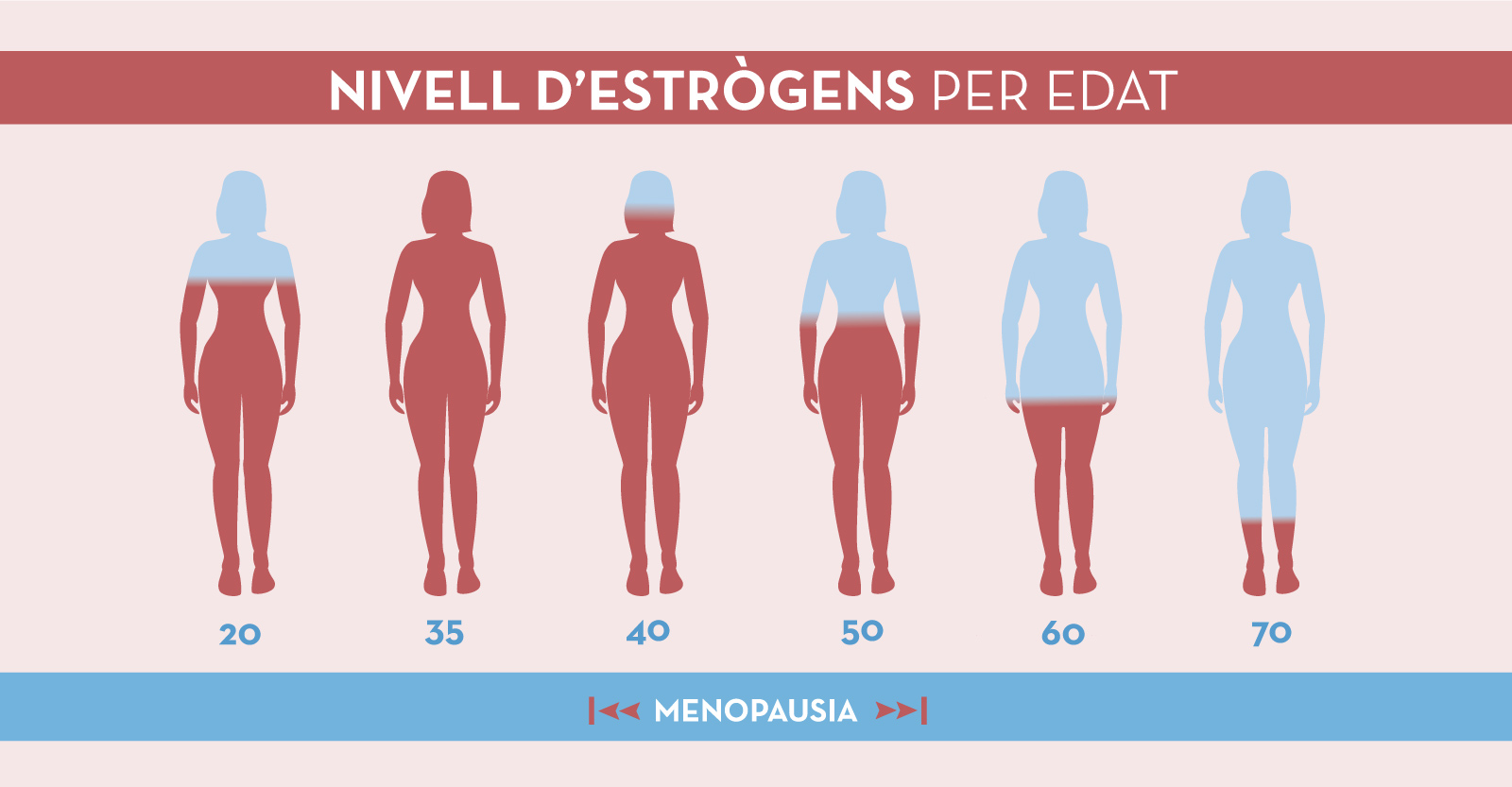 Estrògens i pèrdua de pes en les dones