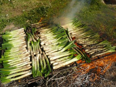 foto Ecocalçots: agroecològics per convicció - 1