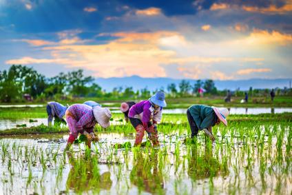 Les dones, motor de l'agricultura