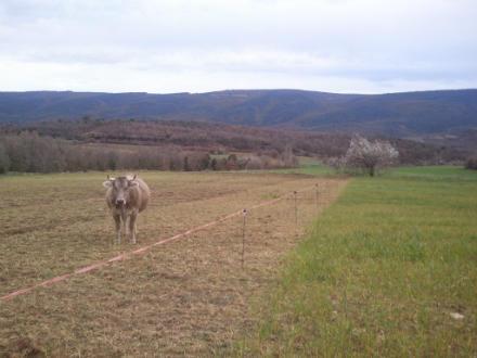 foto Cal Tomaso: xisqueta a les faldes del Montsec - 9