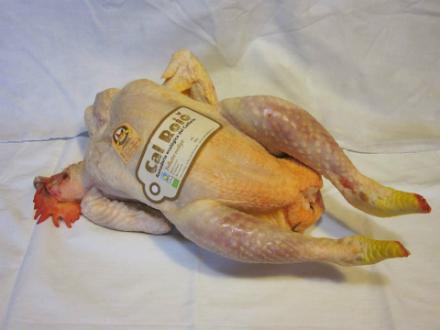 foto Cal Roio: pollastre agroecològic al Berguedà - 1