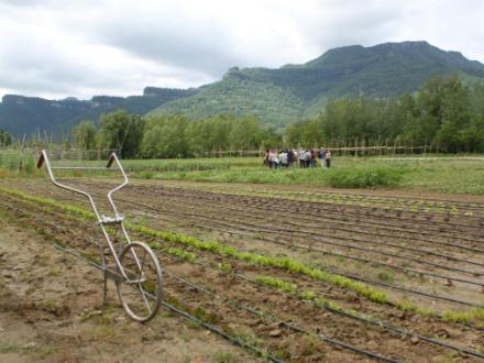 foto La Saó: horta, muntanya i treball en equip - 4