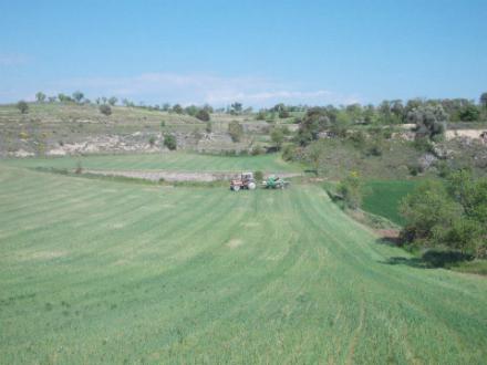 foto La Garbiana Pagesa: tradició rejovenida - 4