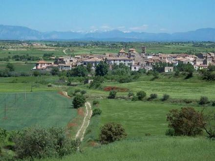 foto La Garbiana Pagesa: tradició rejovenida - 5