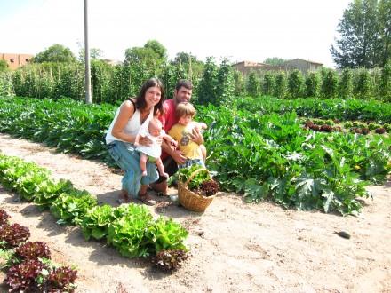 foto L'Hort de Ca la Cistellera: passió pel conreu ecològic - 5