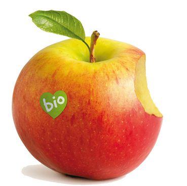 Logo de la fira BioCultura