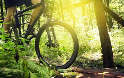 El respecte a l'entorn natural, clau del turisme sostenible