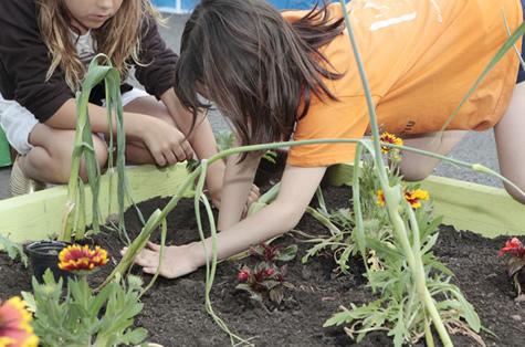 Nens i nenes, benvinguts al món bio!