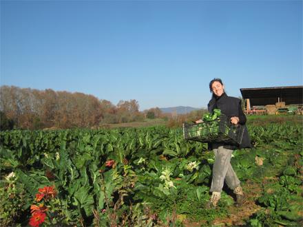 foto La nova pagesia: conreant salut - 4