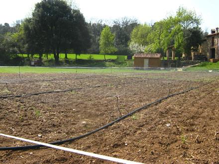 foto La Teulera: agroecologia d'arrel - 7