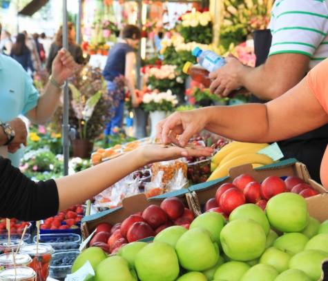 Els productes ecològics: economia de futur