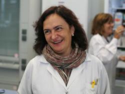Mª Dolores Raigón, Doctora en Enginyeria Agrònoma per la UPV