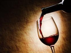 La festa del vi bio arriba a Barcelona