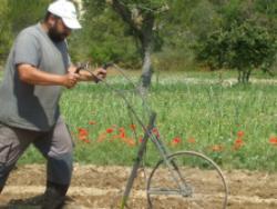 EcoMontsant: la força de les muntanyes mediterrànies