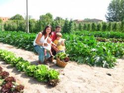 L'Hort de Ca la Cistellera: passió pel conreu ecològic