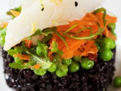 Montse Vallory obre la nova temporada d'activitats saludables de l'ETS amb  un intensiu de cuina natural