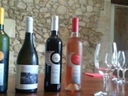 Coma Romà: vins que respiren respecte