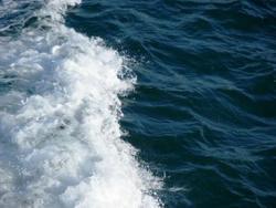 L'aigua de mar cura tots els mals de l'home