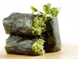 L'alga Nori