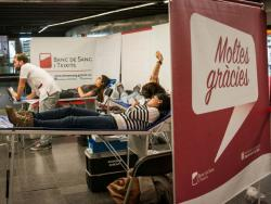 Vine a donar sang a Terra Veritas!