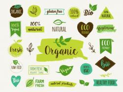 Els 7 paranys dels falsos ecològics
