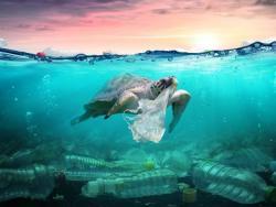 """Surt a la venda """"100 ideas para vivir sin plástico"""", el llibre que ens ajudarà a passar a l'acció"""