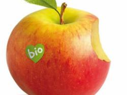 Guanya entrades per al Biocultura, amb l'ETS!