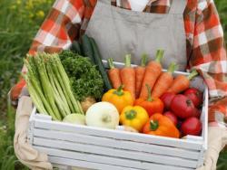 De les verdures se n'aprofita tot