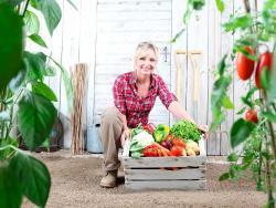 10 raons per comprar cistelles de fruita i verdura directament al productor