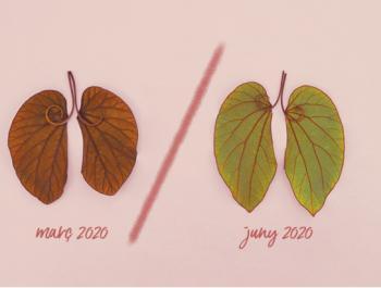 El futur serà ecològic o no serà